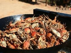 眼下福建的螃蟹正肥,个个圆脐,个个满黄。