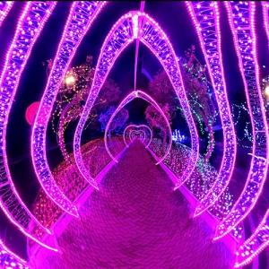 德化·灯光节1 ()