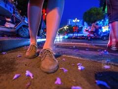 微雨乍晴,地面上零星散落的淡紫色花瓣悸动着谁的心情?