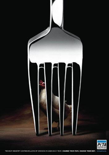 动物公益简笔画内容图片展示_动物公益简笔画图片下载
