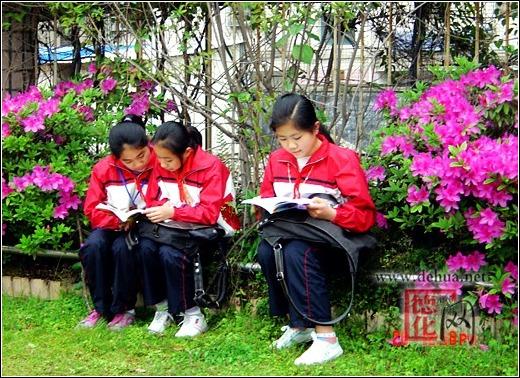 浔中中心体育:春日读书正是时-德化网-德化网-小学掷小学教案实心球图片
